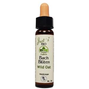 Wild Oat/ Waldtrespe Nr. 36 Bio Bachblüten Tropfen original englische Qualität
