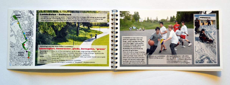 Designprofil Lundedalen kjennetegn og verdier/ design profile characteristics and values