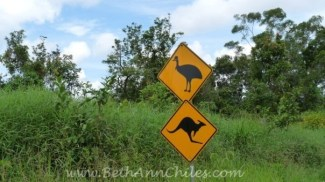 Cassowary and Kangaroo Crossing