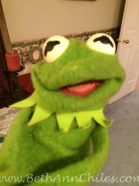 Kermit held my engagement ring in the top of his head!