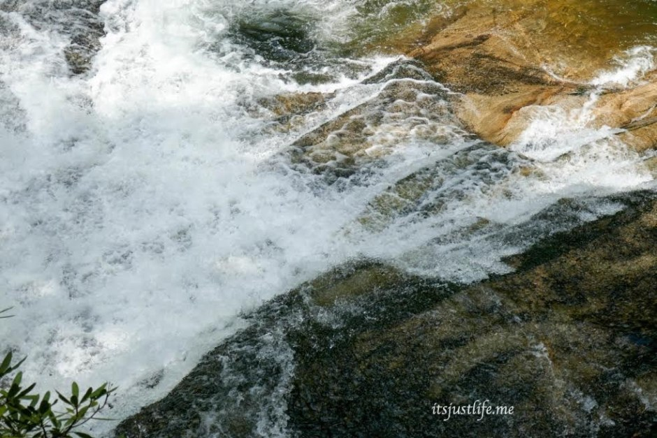 living waters 8