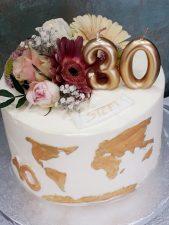 Mapamundi Cake 13