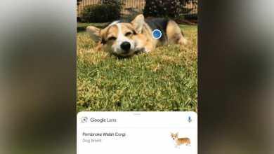 - Sony Xperia XZ2 รองรับฟีเจอร์ Google Lens โดยเรียกใช้งานได้จากแอปกล้องของเครื่องได้แล้ววันนี้
