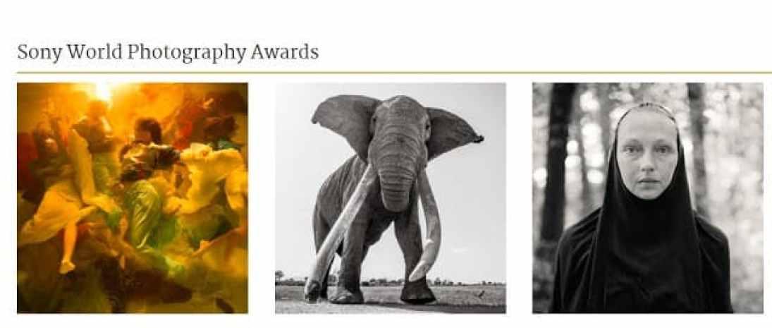 - Screenshot 17 7 - ประกาศรายชื่อคณะกรรมการตัดสินการประกวด Sony World Photography Awards 2019