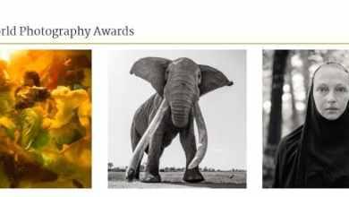 - ประกาศรายชื่อคณะกรรมการตัดสินการประกวด Sony World Photography Awards 2019