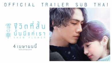- Official Trailer ซับไทย ภาพยนตร์ 'Snow Flower ชีวิตที่สั้น นั้นมีแค่เรา'