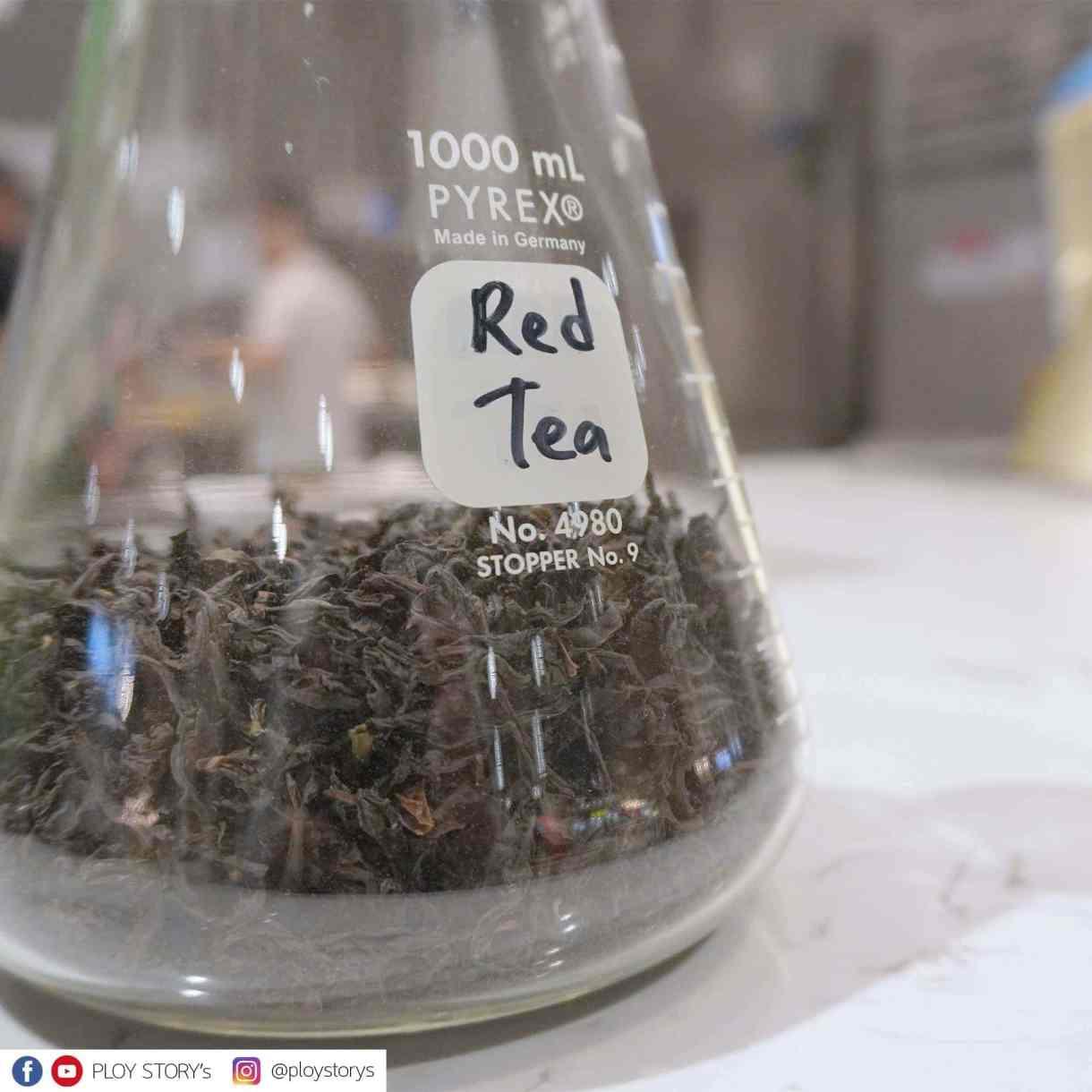 - 06 - รีวิวร้านชา TEASO สวรรค์ของคนรักชา ต้นตำรับจากฮ่องกง คนลดน้ำหนักกินได้แบบไม่รู้สึกผิด