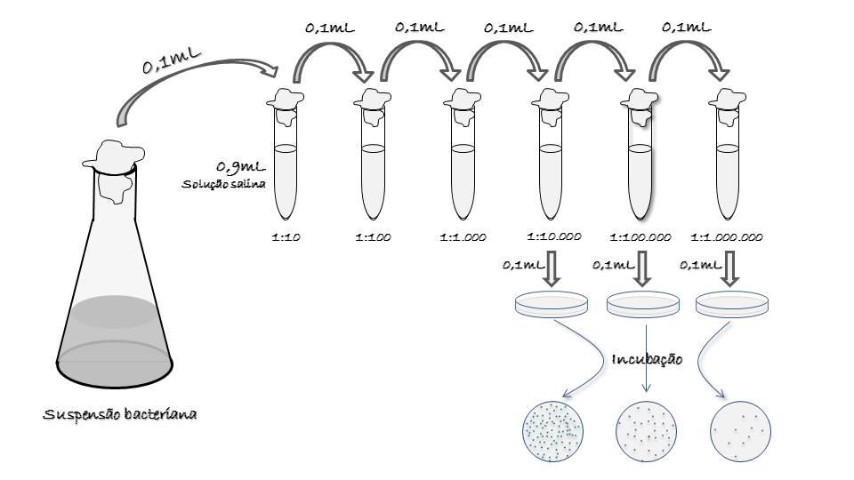 Técnica da diluição seriada de quantificação de população microbiana