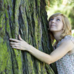 Дендротерапия – лечение и енергийно зареждане от дърветата