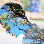 Детоксикация на градския мозък чрез природата
