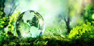 Зелена революция