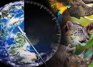 да спрем масовото изчезване на видове