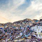 Разграждащи пластмасата гъбички са намерени на сметище в Пакистан