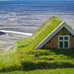 Как да създадем зелен покрив