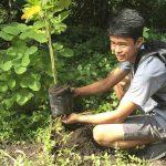 Всички, завършващи във Филипините, трябва да засадят 10 дървета при дипломирането си