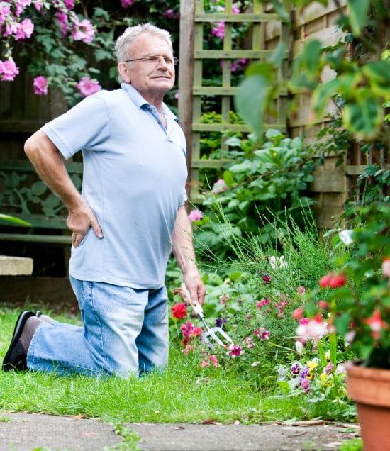 Back ache when gardening