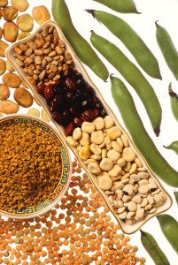 Image of assorted fresh and dried beans to accompany blog on lectins by Eastbourne chiropractor Deborah Ben Shah