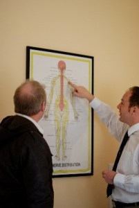 : James Revell, Eastbourne chiropractor showing chiropractic patient nerve chart