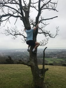 The Image Shows a Massage Therapist Tree Climbing in Eastbourne, perhaps he couldn't find a gym in Eastbourne to suit him?