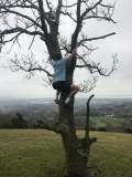 The Image Shows a Massage Therapist Tree Climbing in Eastbourne