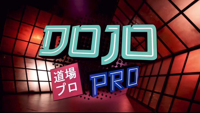 Dojo Pro - S01 E01 - Kevin Ku vs. Kerry Awful