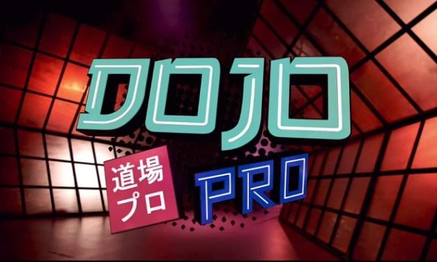 Dojo Pro – S01 E12 – Jeff Cobb