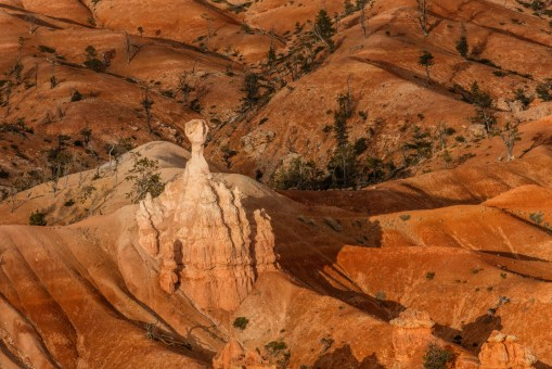 The Subtleties of Bryce Canyon