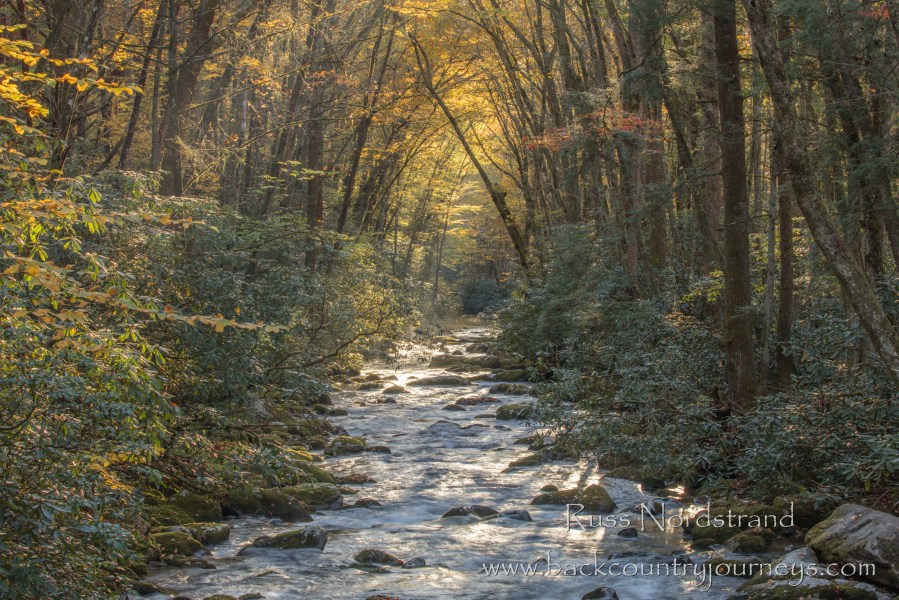 Great Smoky Mountains in Autumn 2019
