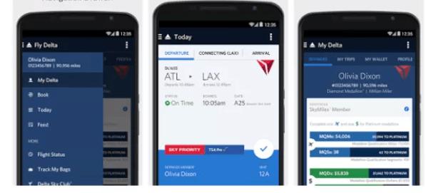 IBM Red Hat Delta Air Lines