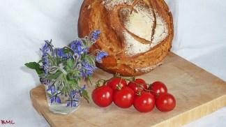 Kerniges Weizenmischbrot (10)