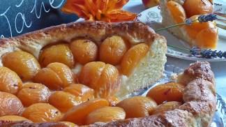 Aprikosenwähe (4)