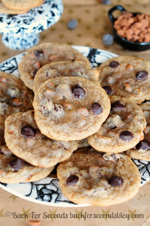 Chewy Cinnamon Cookies with Dark Chcolate Chips -  These cookies are AWESOME! Definitely going on my Christmas cookie trays this year!  @Backforseconds #cinnamoncookies #christmascookies #darkchocolaterecipes