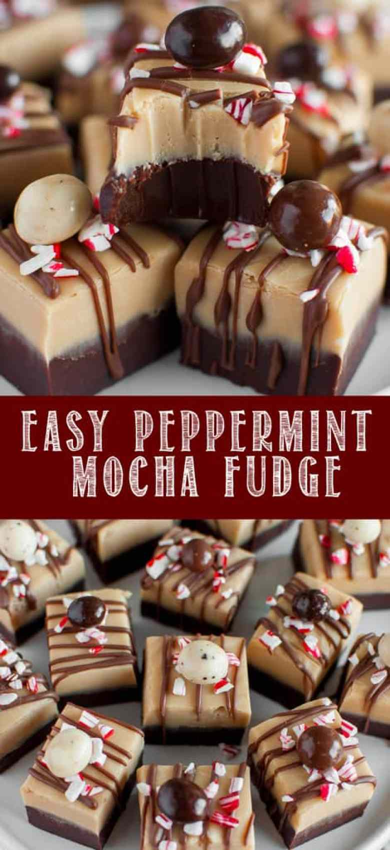 Peppermint Mocha Fudge collage photo