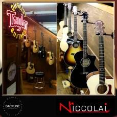 Niccolai_Taylor