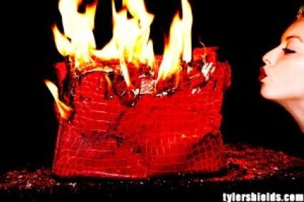 Image: Handbag burning