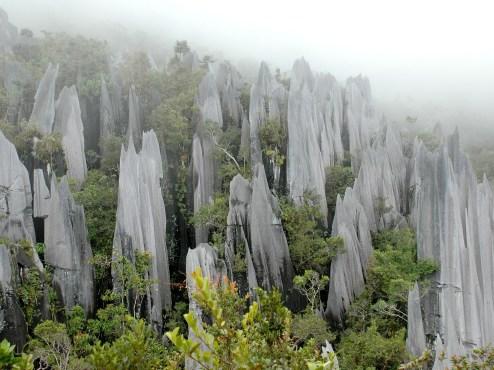 Gunung Mulu
