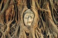 Ayutthaya is Thailand's equivalent of Angkor Wat