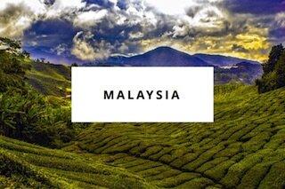 malaysia des