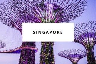 singapore des