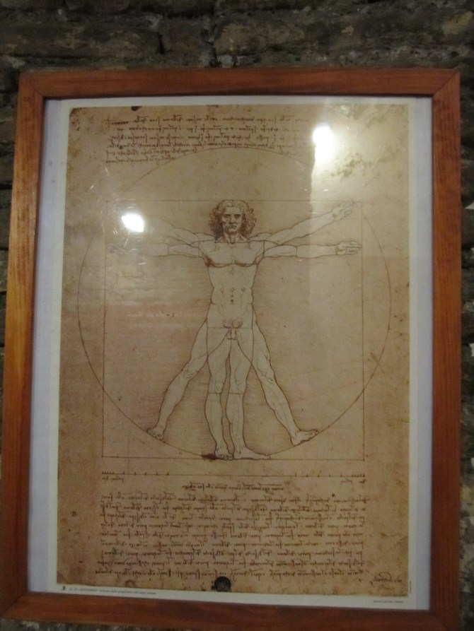 The classic Vitruvian Man, which shows the proportions of the human body