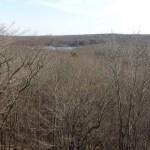 Legend Wood Shelter view