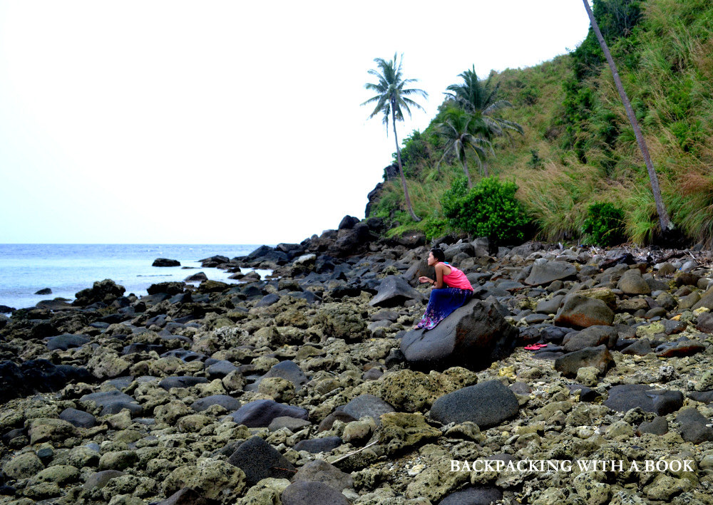 Updated Travel Guide to Apo Island, Negros Oriental
