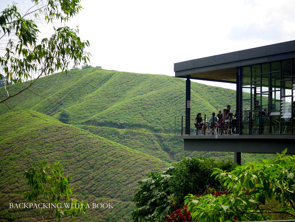 Cameron Highlands Itinerary, Budget, and Accommodation
