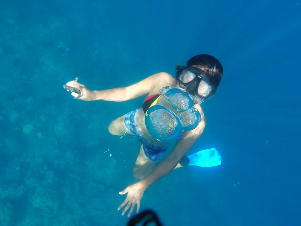 Apo Island Travel Guide Snorkeling in Apo Island
