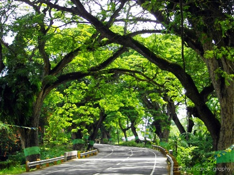 South-Cebu-Travel-Guide