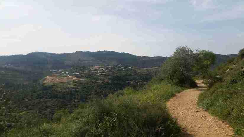 Views from Sataf