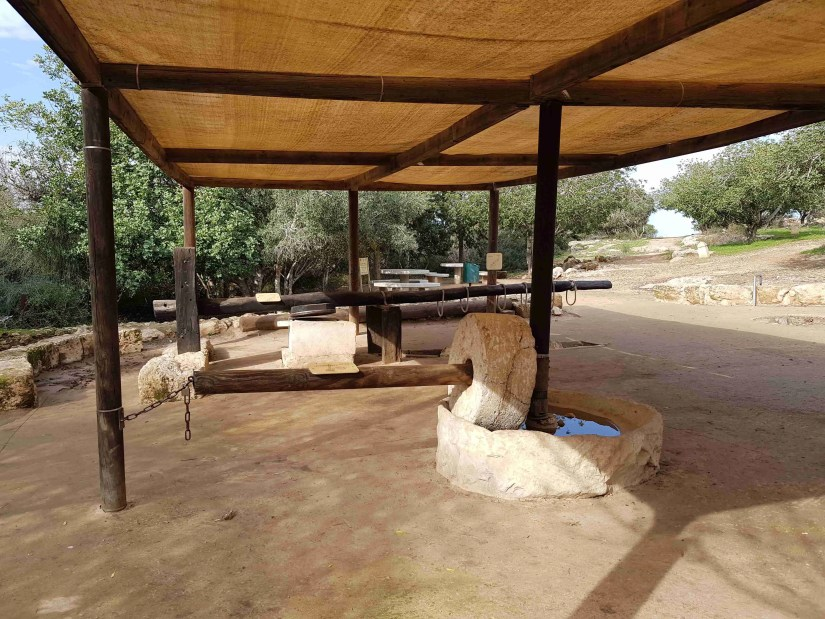 Replicas of ancient oil presses in Beit Guvrin National Park