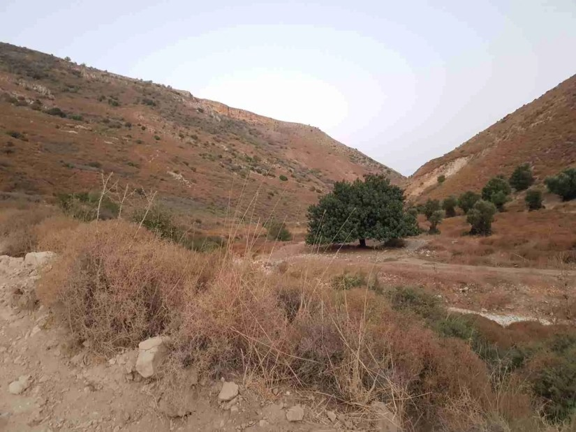 Inside the Dishon Wadi in the Upper Galilee