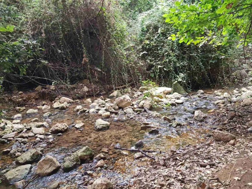 Shallow water flowing in Nahal Amud on the Israel National Trail