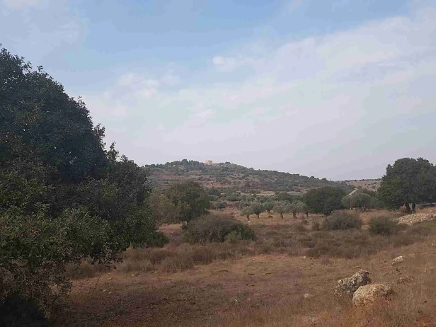 Zippori National Park in the distance